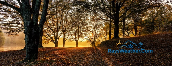 Gallery Image ray's%20weather%202.jpg