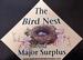 The Bird's Nest & Major Surplus