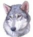 Graywolf Properties