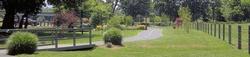 Luray Hawksbill Greenway