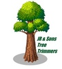 JR & Sons Tree Trimmers