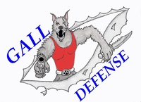 Gall Defense Security Solutions