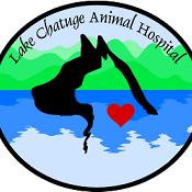 Lake Chatuge Animal Hospital
