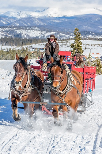 Sleigh rides and hay rides offered with Sombrero Stables