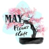 May Flower and Gift