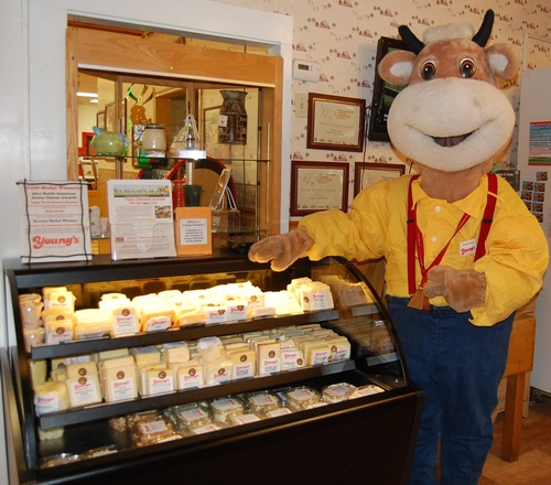Gallery Image Youngs%20Dairy%20mascot.jpg