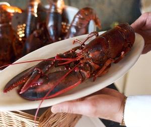 Scoma's Sausalito -- Fresh Seafood