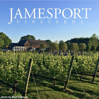 Jamesport Vineyard