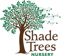Shade Trees Nursery, Inc.