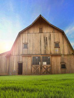 Gallery Image henpecked-barn-250x331.jpg