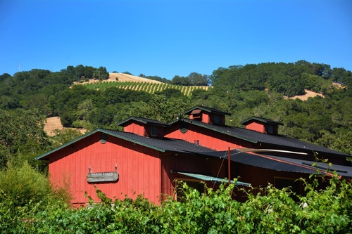 Gallery Image Martin%20Ranch%20winery%20building.jpg