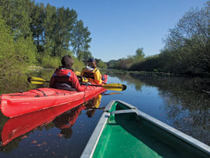 Gallery Image Kayak%20Mercer%20Slough.jpg