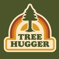 TreeHuggers Services / Removals