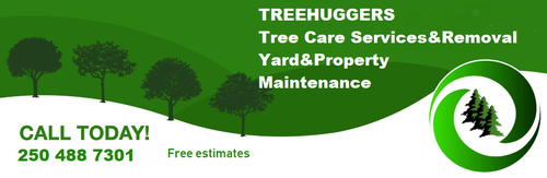 Gallery Image treehugger5.png