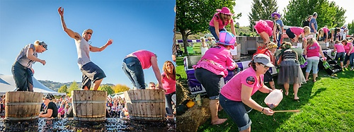 Gallery Image GrapeStomp%20x%202.jpg