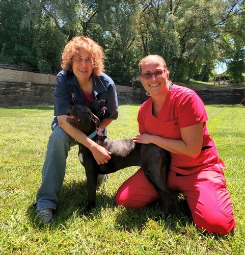 Dr. Lisa Schrum and Dr. Krista Holstein