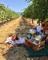 A Taste of Sonoma Gift Baskets