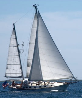 Gallery Image Cape%20SailingCharters%20%20Pic%201.jpg