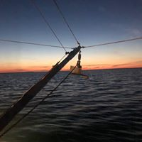 Gallery Image boat%20at%20sunset.jpg