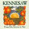Kennesaw Fruit And Juice
