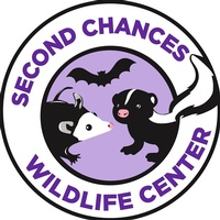 Second Chances Wildlife Center