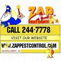 Gallery Image Zap%20Pest%20Control1.jpg