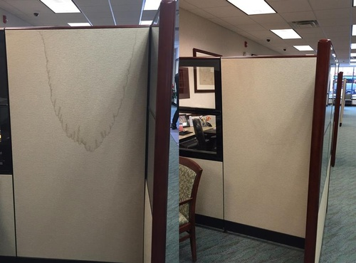 Cubicle Panel Before and After