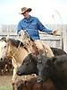 Madison County Cattlemen's Association