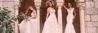 Wedding Dress & Tux Shop, The