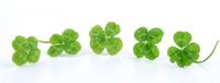 Irish Propane