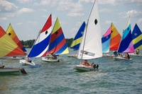 Shoreline Sailboats