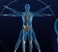 Lee Chiropractic & Athletic Training, PLLC