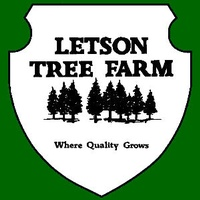 Letson Tree Farm II
