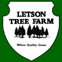 Letson Tree Farm II