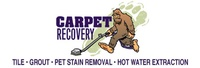 Carpet Recovery