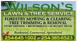 Wilson's Tree Service