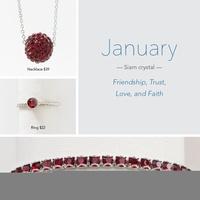 January Birthstone!