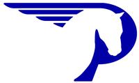Pegasus Technologies & Solutions, Inc.