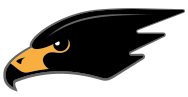Blackhawk Aerospace Solutions