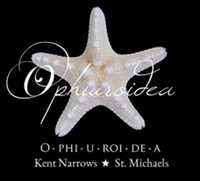 Ophiuroidea ''The O''