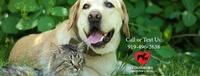 Louisburg Veterinary Clinic