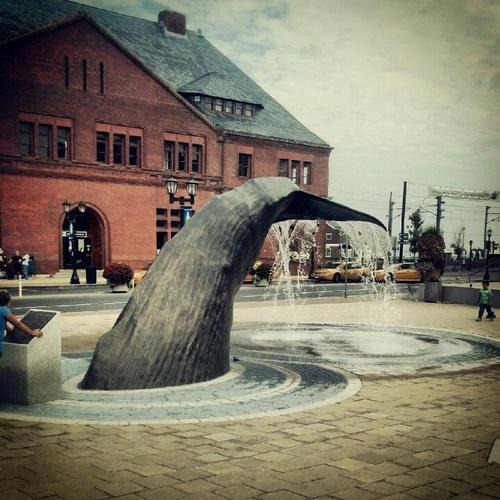 Gallery Image d3d59d45f6683bf05a308505a8c06d2a--mystic-connecticut-whale-tail.jpg