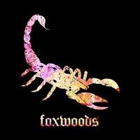 Scorpion Bar Foxwoods