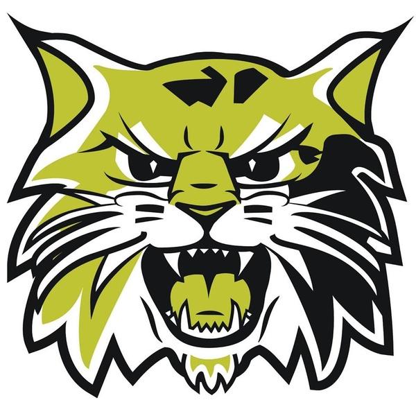 Neosho Wildcat Creations