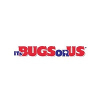 It's Bugs Or Us