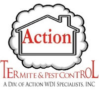 Action WDI Specialist, Inc.