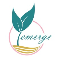 Emerge Consulting