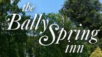 Bally Spring Inn