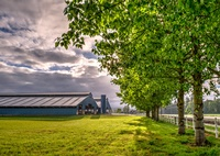 Gallery Image rickreall-dairy_rickreall-dairy-landscape.jpg