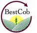 Best Cob LLC